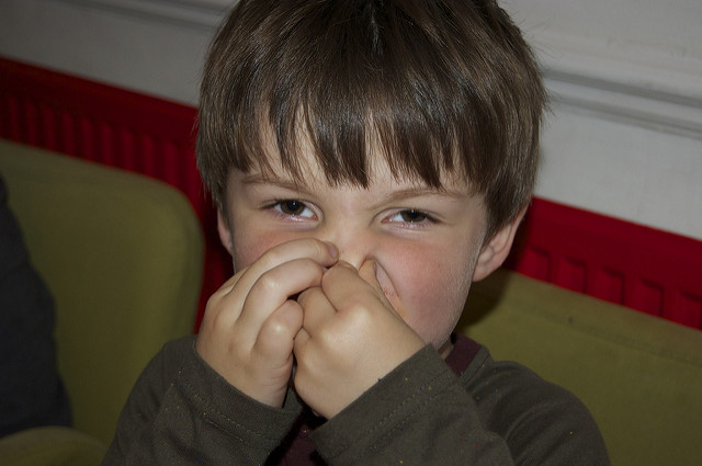 What's That Smell? The Odors that Could Signal Trouble from Your Furnace 1